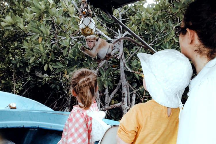 Muturajawela boat safari